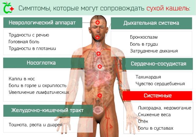 Физиология сухого кашля