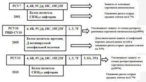 Характеристика антигенного состава пневмококковых конъюгированных вакцин