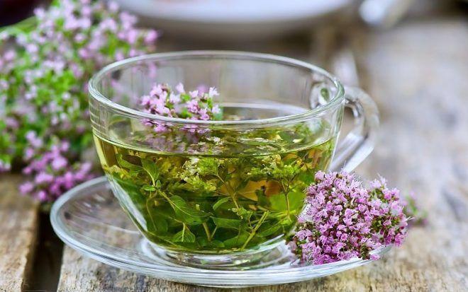Чай из чабреца для лечения гнойного бронхита