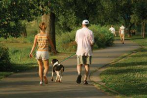 Гулять нужно медленным темпом и избегать большого скопления людей