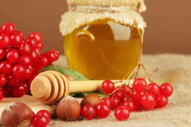 Калина с медом для лечения легких