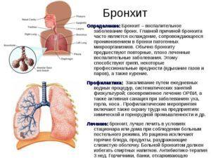 Лечение и профилактика бронхита