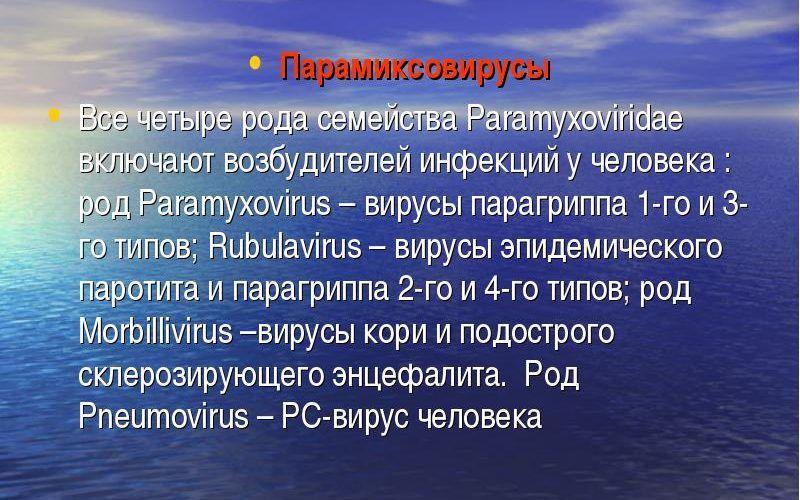 Парамиксовирус