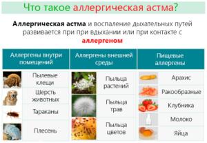 Применять прополис при астме запрещено