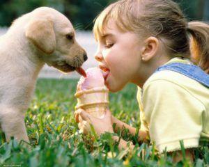 Соседство с домашними животными может спровоцировать развитие астматического бронхита