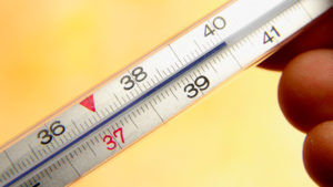 Ставить горчичники при температуре выше 37 градусов запрещено