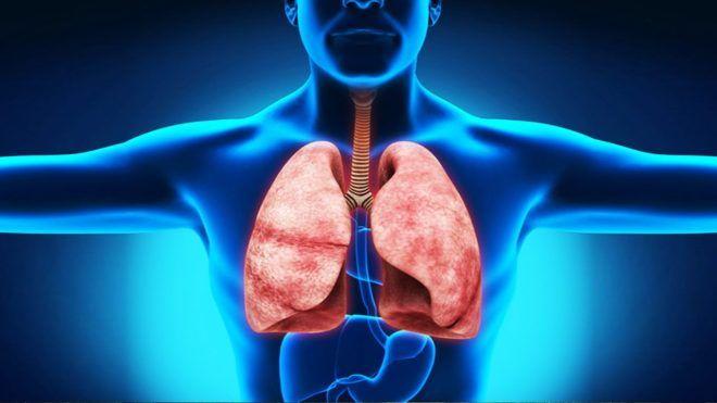 Пневмофиброза легких