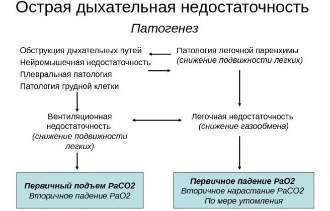 Этиологии