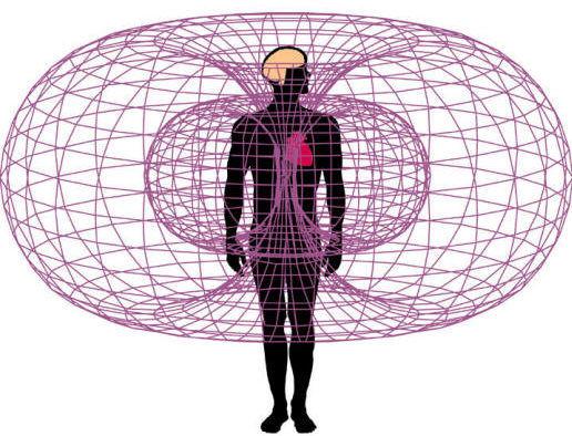 Импульсное низкочастотное электромагнитное поле для укрепления иммунитета