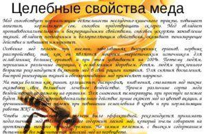 Лечебный эффект меда