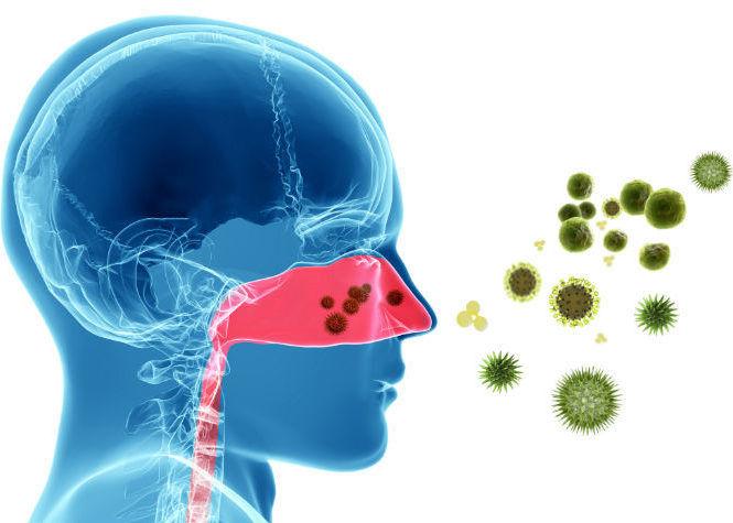 Осложнение патологии бактериальной инфекцией