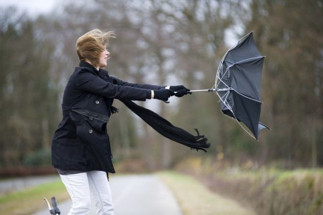 При сильном ветре прогулка запрещена
