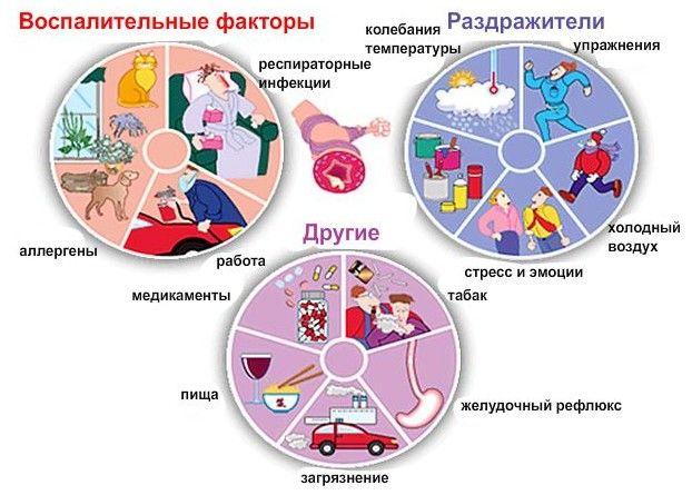Причины аллергического бронхита