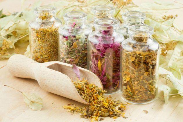 Растительные сборы для лечения бронхита и трахеита