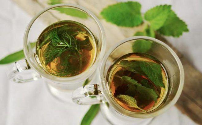 Травяной чай из мяты, сушеницы и листьев мать-и-мачехи