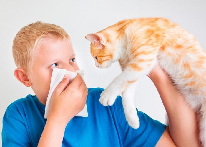 Устранение контакта с возможными аллергенами
