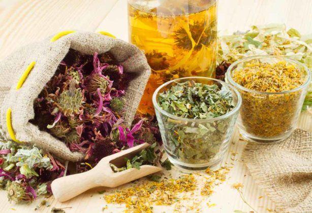 Сбор из лечебных трав при бронхите