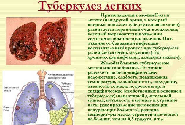 При туберкулезе легких принимают шалфей