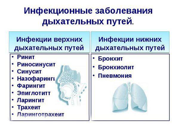 Инфекционные патологии верхних дыхательных путей