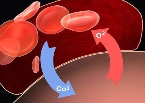 Перенасыщение крови углекислым газом