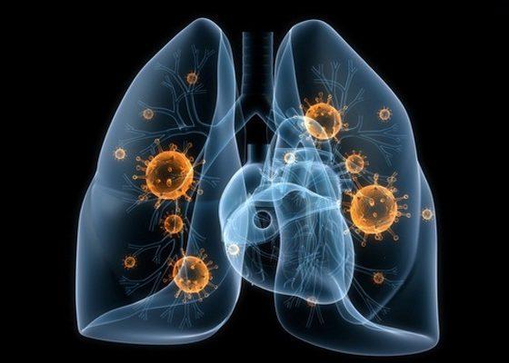 Грибковые заболевания органов дыхания