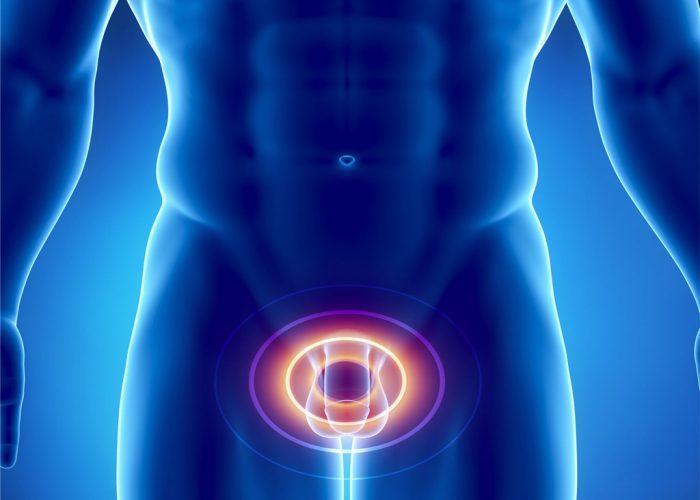 Инфекции половых органов