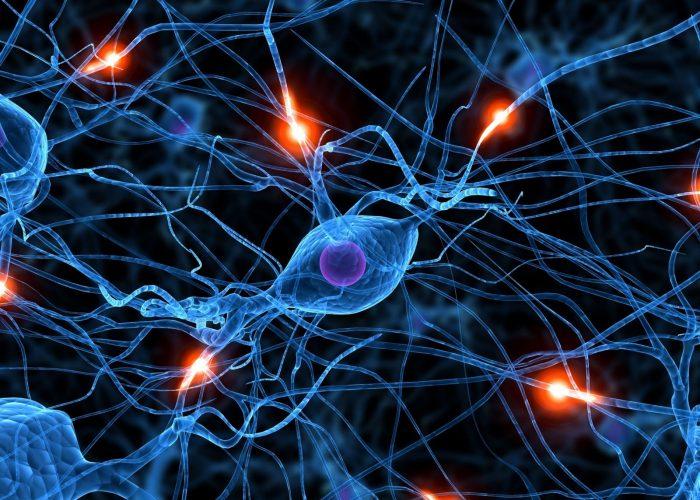 Незначительно стимулируют центральную нервную систему