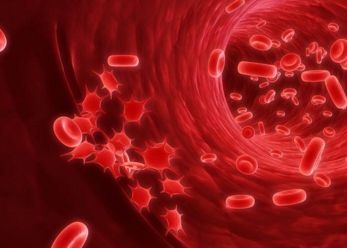 Патологии кроветворной системы