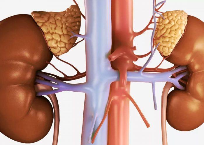 После удаления опухоли надпочечников – феохромоцитомы
