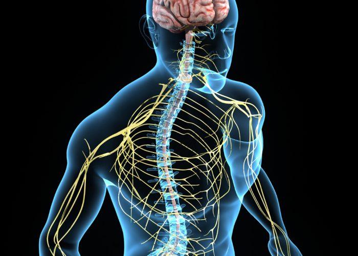 При инфекционных заболеваниях нервной системы