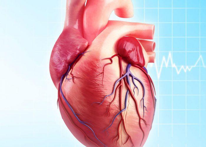 При некоторых нарушениях в работе сердца