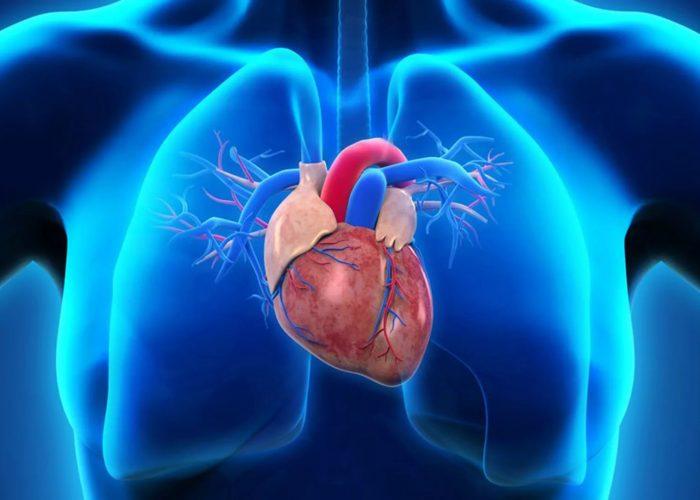 При застойных явлениях сердечного кровообращения
