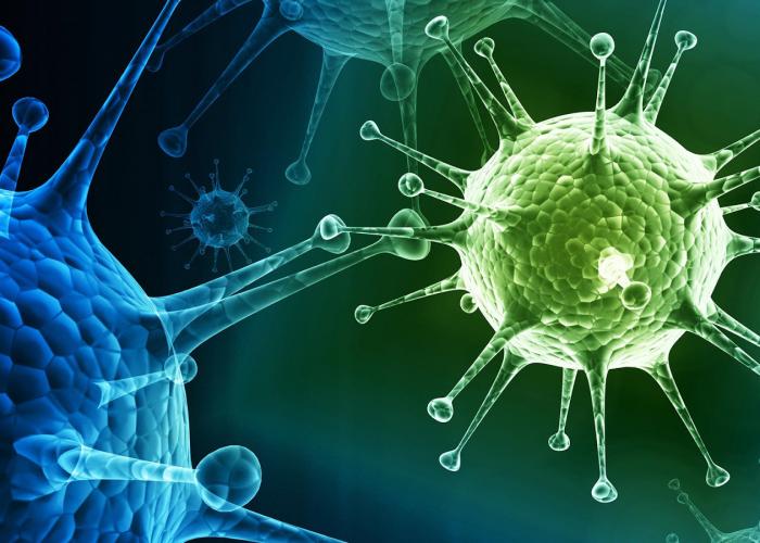 Способность организма сопротивляться действию бактерий и вирусов