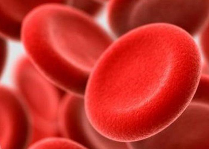 Заболевания, связанные с патологиями кроветворения