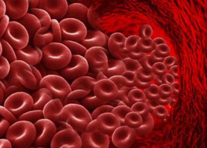 Замедление свертываемости крови