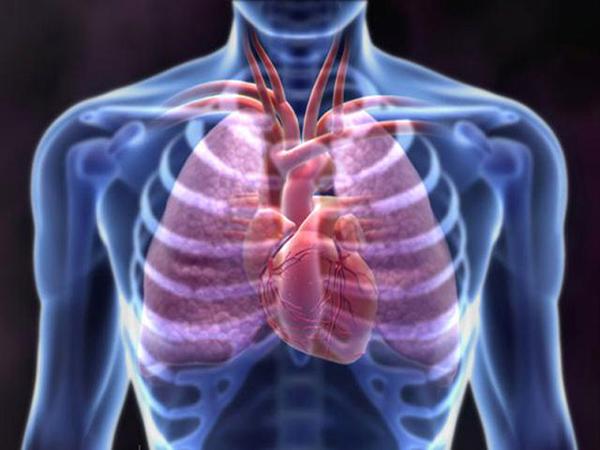 Описание симптомов и причин буллезной болезни легких
