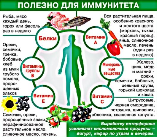 Как быстро повысить иммунитет взрослому с помощью продуктов питания
