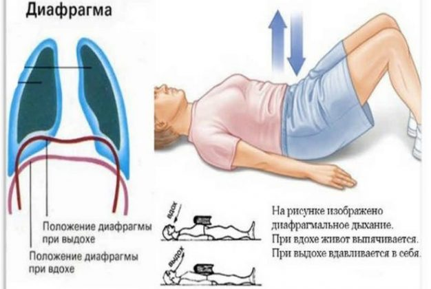 Дыхание диафрагмой