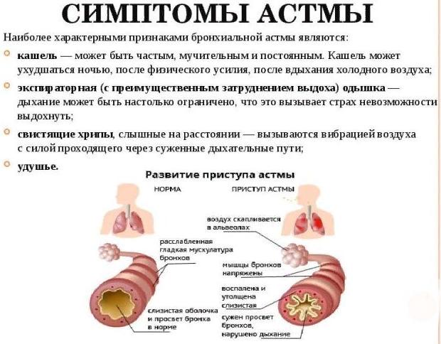 Симптоматика бронхиальной астмы